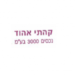 """אלישע לוריא, מנכ""""ל חברת קהתי אהוד נכסים 3000"""